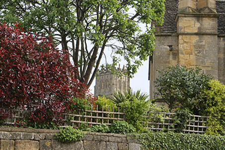 The church tower through the trees