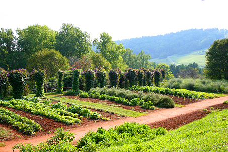 View from Mulberry Row of the gardens and neighboring hillside