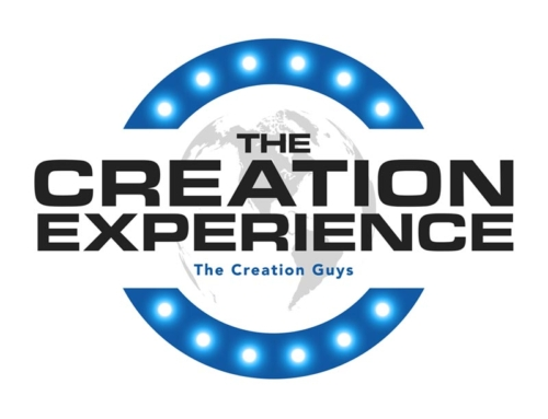 The Creation Experience Logo